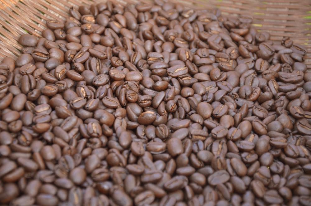 オーガニック薪焙煎コーヒー
