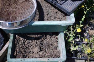 種まきの土作り