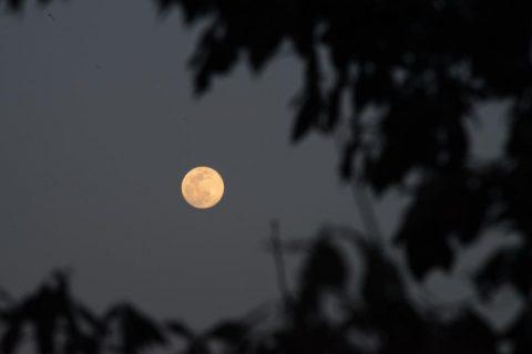 東峰村の月