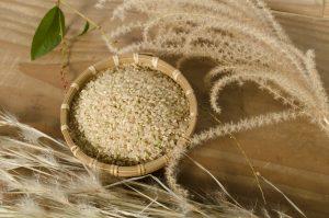 棚田 岩屋湧水 満月収穫新米
